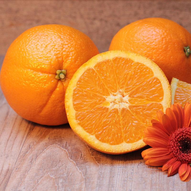 Một giải pháp khác là tinh dầu trong vỏ cam, quýt